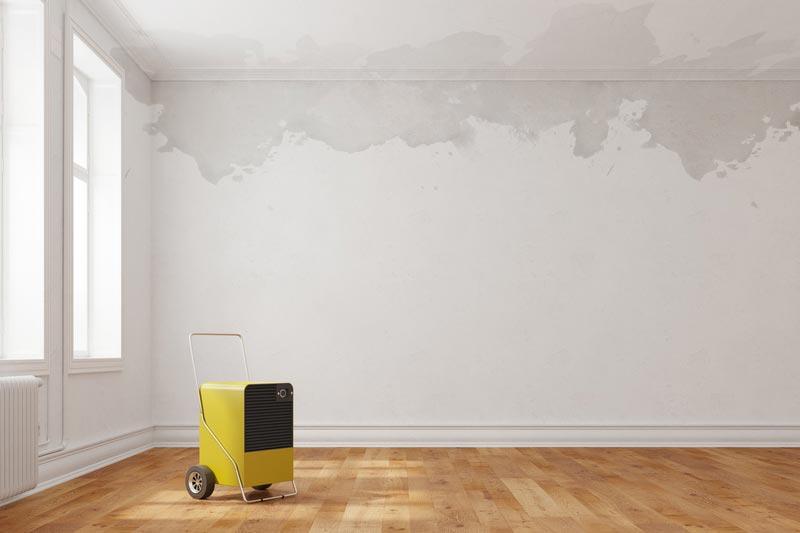 abs allg uer bautenschutz analyse beratung sachverstand. Black Bedroom Furniture Sets. Home Design Ideas